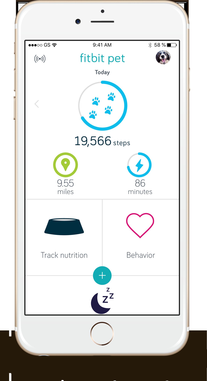 Fitbit Pet Dashboard screen