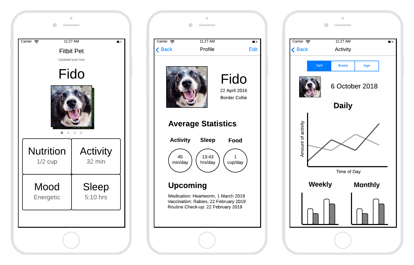 Three low-fidelity prototype screens for the Fitbit Pet app which show the app dashboard, pet profile, and activity summary screens.